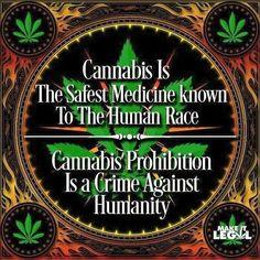 #freetheweed #cannabis #hemp #cbd #marijuana #legalizeit #420 #710 #828isgreat #supportyourlocalheadshop