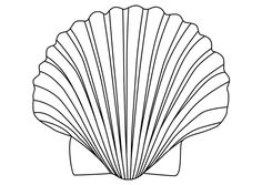 Muschel malvorlage  Fun & Games / Fun with Sea Shells / Shells to Color | Baby ...