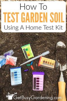 Did you pick up a soil testing kit at the garden center, but don't know how to use it, or make sense of the results? Don't worry, I will guide you through using a purchased kit step by step so you know you have done everything right. It's super easy and cheap, and lets you know exactly what your garden needs to help your plants thrive. Learn how to run that soil test yourself for accurate results so you can amend your dirt properly for the kinds of plants you are trying to grow. Garden Soil, Garden Care, Organic Vegetables, Growing Vegetables, Gardening For Beginners, Gardening Tips, Horticulture, Soil Test, Composting 101
