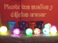 Frases Tableware, Kitchen, Frases, Plants, Dinnerware, Cooking, Tablewares, Kitchens, Dishes
