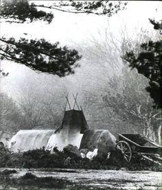 Gypsy bender tent
