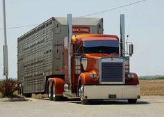 Outlaw Truck n. What log book ....