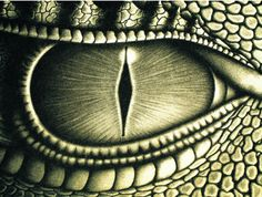 Dragon eye. Beautifully done! Perfect detail! #Dragons