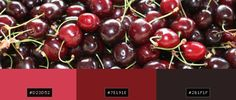 cherry colors - Google Search Shower Gel, Cherry, Fruit, Google Search, Colors, Food, Essen, Colour, Meals