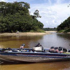rio negro lodge - Google Search