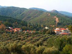 Natur Med Weight Loss and Health Spa Resort, Turkey