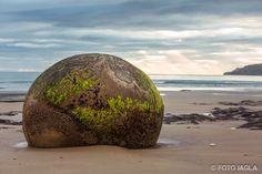 Neuseeland (Südinsel) - Moeraki Boulders bei Sonnenaufgang am Koekohe Beach an der Küste von Otago