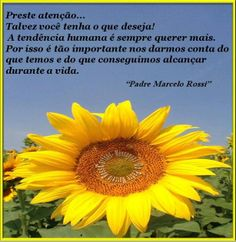 mensagem do padre Marcelo Rossi - frase