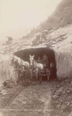 Snow Tunnel ~ On the Ouray and Silverton Toll Rd ~ Colorado ~ 1888