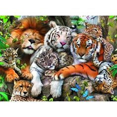 Aww all of the best big cats