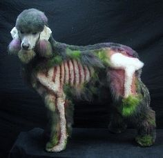 I wonder how anyone could do this to their poor doggy?  Poor guy!