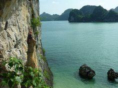 Rock climbing Cat Ba National Park, Vietnam via South East Asia Backpacker
