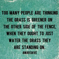 """""""Too many people are thinking the grass is greener on the other side of the fence, when they ought to just water the grass they are standing on."""" - Amar Dave   AndThenWeSaved.com"""