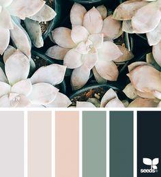 Apartment color schemes design seeds Ideas for 2019 Apartment Color Schemes, Bedroom Color Schemes, Bedroom Colors, Bedroom Color Palettes, Neutral Color Palettes, Interior Design Color Schemes, Neutral Colors, Bedroom Decor, Colour Schemes For Living Room