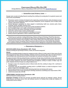 Auditor Resume Sample Amazing Nice Understanding A Generally Accepted Auditor Resume Check More .