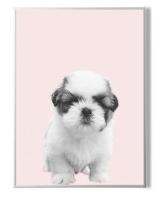 Puppy Print,Nursery Decor,Baby Gift,Animal Wall Decor,Kids Room Art,Wall Art Puppy,Pink and White,Printable Decor,Nursery Animal,Poster Dog by YourPrintsShop on Etsy