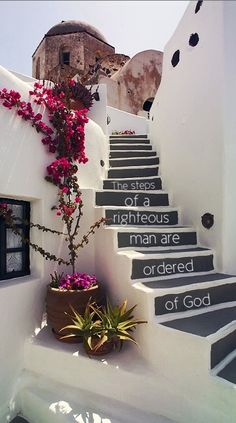 Psalms 37:23 The steps of a good man are ordered by the Lord: and he delighteth in his way.