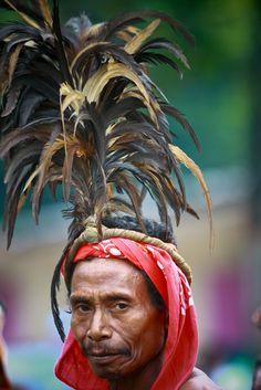 Manu Fulun headdress, East Timor