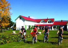 On Yer Bike WInery Tour is a fun one day winery bike tour, bike hire and electric bike hire for wine tasting in Hawke's Bay, New Zealand - get on your bike! Stables, Attraction, Things To Do, Dolores Park, Tours, Events, Bike, Adventure, Day