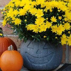 Plastic Pumpkin Bucket Planter 31 Days of Halloween Day 2 Halloween Zombie, 31 Days Of Halloween, Outdoor Halloween, Holidays Halloween, Haunted Halloween, Easy Halloween Decorations, Halloween Crafts, Halloween Wreaths, Halloween Ideas