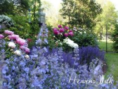 gorgeous garden colors