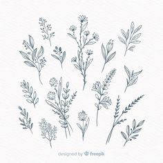 30 Simple Ways to Draw Flowers // Flower drawing ideas, floral drawing, floral art, sketchbook Realistic Flower Drawing, Simple Flower Drawing, Easy Flower Drawings, Beautiful Flower Drawings, Floral Drawing, Floral Watercolor, Drawings Of Flowers, Flower Sketches, Art Drawings