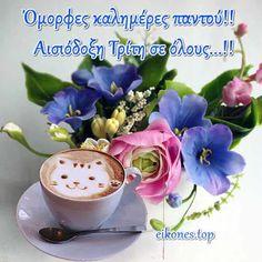 Beautiful Pink Roses, Good Morning, Ethnic Recipes, Mornings, Greek, Videos, Prints, Buen Dia, Bonjour