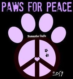 Paws for peace quote via Namaste Cafe at www.Facebook.com/NamasteDharmaCafe