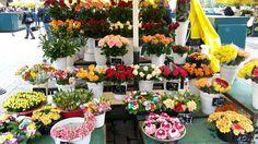 Cracovia - Mercado de flores (2)