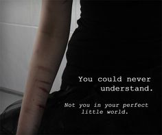 You Could Never Understand. Not You In Your Perfect Little World. Self Harm.