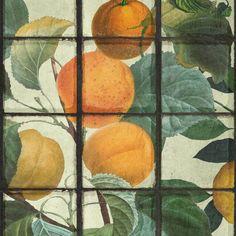 Orangery Wallpaper - Sample