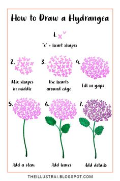 In this drawing tutorial, learn how to draw a hydrangea flower by using two basic shapes