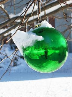 green bulb  greeting card  for sale  5x7 $3.50 ( ask for in bulk price)  copyright stephanie naffah photography   ALL RIGHTS RESERVED