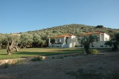 View of the Gera's Olive Grove ESTATE Olive Tree, Lodges, Acre, Natural Beauty, Greece, Relax, Island, Traditional, Landscape