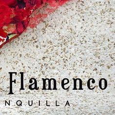 PRIMER ESTUDIO de FLAMENCO en BARRANQUILLA DanzaRitmo Movimiento - - - #carmentortflamenco #zapateado #zapatosflamencos #bailaora #flamenco #danza #baile #barranquilla  #flamencobarranquilla #tap #tapbarranquilla #flamencocolombia #colombiaflamenca #flamencocostacolombiana #aprendeflamenco #learnflamenco #bailabarranquilla