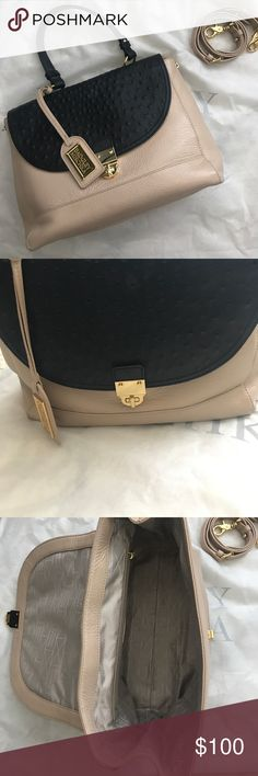 Badgley Mischka purse Black and blush purse from Badgley Mischka. Can use as a hand bag or used over the shoulder with additional strap. Pure leather, brass buckle and zippers. Great condition! Badgley Mischka Bags Shoulder Bags
