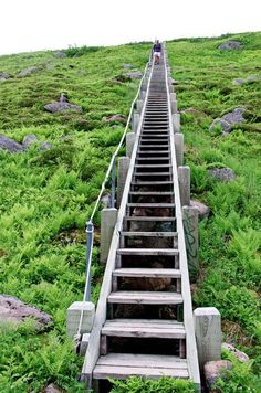 I counted 177 stairs in total - hiking to the top of Gros Morne Mountain