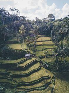 Ten mistakes to avoid on a Bali trip - sandramarion Honeymoon Night, All Inclusive Honeymoon, Honeymoon Cruise, Honeymoon Destinations, Bali Lombok, Ubud, Travel Around The World, Around The Worlds, Bali Baby