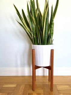 My Search for a Midcentury Modern Plant Stand - Welcome Objects