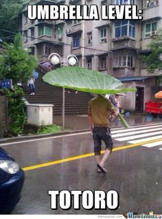 Funny pictures about Totoro umbrella. Oh, and cool pics about Totoro umbrella. Also, Totoro umbrella. Hayao Miyazaki, Totoro Umbrella, Funny Umbrella, Rain Umbrella, Umbrella Quotes, Umbrella Tree, Geeks, Ac New Leaf, Funny Memes