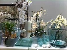nuova oggettistica Glass Vase, Home Decor, Decoration Home, Room Decor, Home Interior Design, Home Decoration, Interior Design