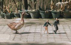 """♥♥♥  Fotógrafo de casamento encolhe noivos em suas fotos Sabe aquele filme chamado """"Querida, encolhi as crianças""""? O fotógrafo tailandês Ekkachai Saelow poderia lançar mais um filme da franquia e chamar ... http://www.casareumbarato.com.br/fotografo-de-casamento-encolhe-noivos-em-suas-fotos/"""