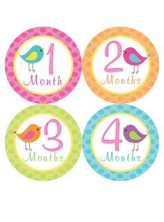 Monthly Onesie Stickers Girl Baby Month Stickers Bird Birdie Baby Shower Gift Idea by BumpAndBeyondDesigns on Etsy, $10.00