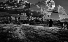 #Formy #Wolf #Sad #Night #Moon #Escape #From #Reality