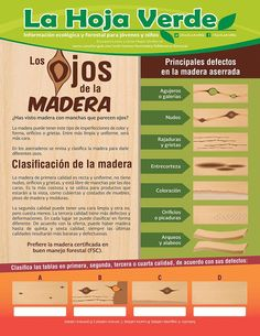 #FelizLunes ¿Cómo identificar si la madera es de calidad? #LaHojaVerde te lo explica. Cool, Twitter, Bags, Display Stands, Green Leaves, Happy Monday, Circuit, Stains, Wood