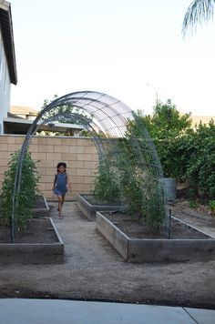 This arbor idea could be used for any number of veggies in your back yard or at a school! LOVE This Idea!