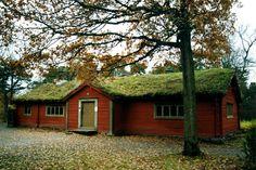 NINIVESKAL: Skanzen ve Stocholmu - Švédsko - fotografie II. Ce...