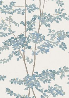 Beech Wallpaper in bluegrass from Lewis and Wood is a wide width wallpaper in a charming design featuring beech saplings growing up the wall, worldwide delivery available. Dining Room Wallpaper, Wood Wallpaper, Wallpaper Samples, Hallway Wallpaper, Wallpaper Online, Cottage Wallpaper, Accent Wallpaper, Interior Wallpaper, Luxury Wallpaper