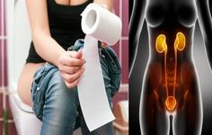How Dangerous Is a Urinary Tract Infection - Urinary tract infection (UTI) often occur in older adults, it happens when a bacterial infection affect the bladder which is supposed to be a sterile environment, the seriousness of urinary tract infections and how dangerous it could be can vary from a minor medical issue easy to solve with... - Dangerous, Dangerous Urinary Tract Infection, Urinary Tract Infection - Health, health care, other