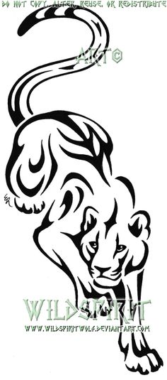 This is 's completed tattoo of a custom version of my tribal prowling panther design. Please do not copy, trace, alter, or redistribute this anywhere in any way, shape, or form! This design was cre...